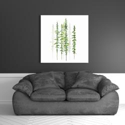 Canvas 36 x 36 - Minimalist trees