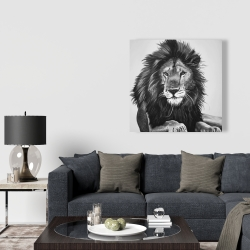 Canvas 36 x 36 - The lion king