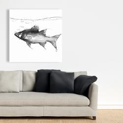 Canvas 36 x 36 - Swimming fish