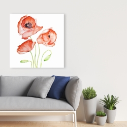 Canvas 36 x 36 - Watercolor poppies