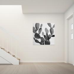 Canvas 36 x 36 - Grayscale cactus