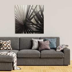 Canvas 36 x 36 - Grayscale tropical plants