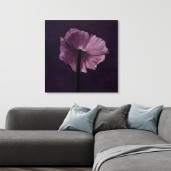 Canvas 36 x 36 - Purple petals