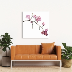 Canvas 36 x 36 - Branch of cherry blossoms