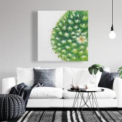 Canvas 36 x 36 - Watercolor mini cactus