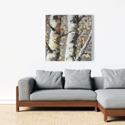 Canvas 36 x 36 - Budding white birches 1