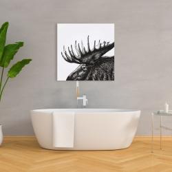 Canvas 36 x 36 - Moose plume