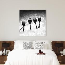 Canvas 36 x 36 - Four birds perched