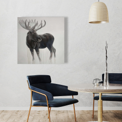 Canvas 36 x 36 - Bull moose