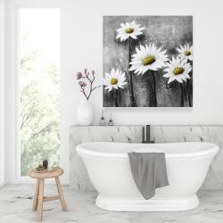 Canvas 36 x 36 - Daisies