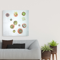 Canvas 36 x 36 - Cactus plants