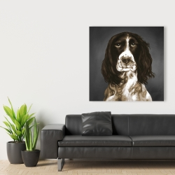 Canvas 36 x 36 - Brown english springer spaniel