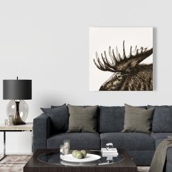 Canvas 36 x 36 - Moose plume sepia