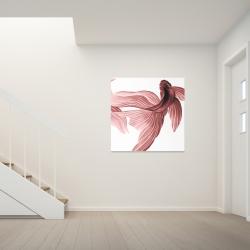 Canvas 36 x 36 - Red betta fish