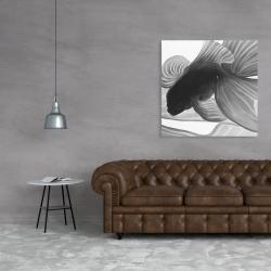 Canvas 36 x 36 - Monochrome two betta