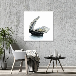 Canvas 36 x 36 - Pearl oyster