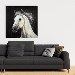 Canvas 36 x 36 - White star horse
