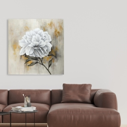 Canvas 36 x 36 - White peony