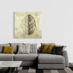 Canvas 36 x 36 - Translucent