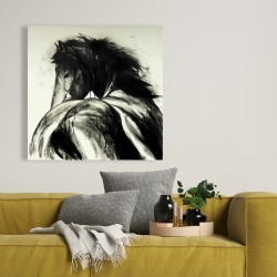 Canvas 36 x 36 - Classical horse