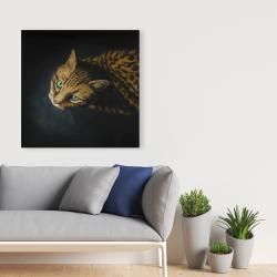 Canvas 36 x 36 - Bengal cat