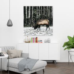 Canvas 36 x 36 - Caribou in the forest