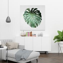 Canvas 36 x 36 - Monstera leaf