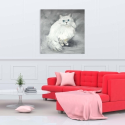 Canvas 36 x 36 - Chinchilla persian cat