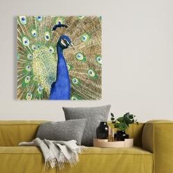 Canvas 36 x 36 - Peacock