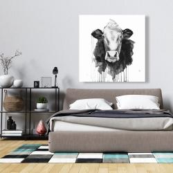 Canvas 36 x 36 - Cow