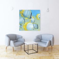 Canvas 36 x 36 - Butterfly fishes