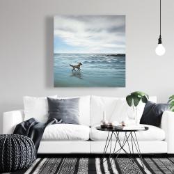 Canvas 36 x 36 - Dog on the beach