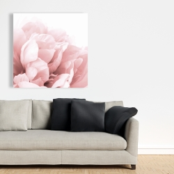 Canvas 36 x 36 - Peony flower dream