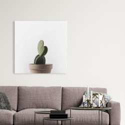 Canvas 36 x 36 - Potted cactus