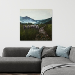 Canvas 36 x 36 - Sheep in the countryside