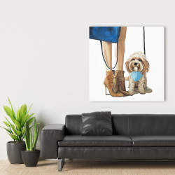Canvas 36 x 36 - Fashionable cavoodle dog