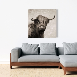 Canvas 36 x 36 - Highland cattle sepia