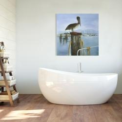 Canvas 36 x 36 - Pelican