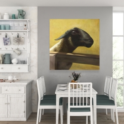 Canvas 36 x 36 - Young ram