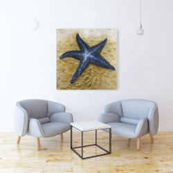 Canvas 36 x 36 - Beautiful starfish