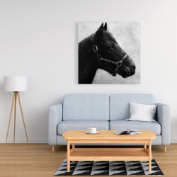 Canvas 36 x 36 - Gallopin the horse