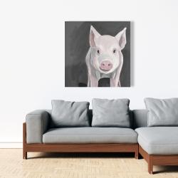 Canvas 36 x 36 - Little piglet