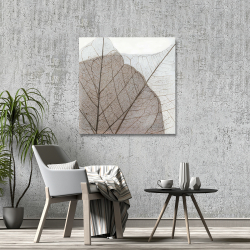 Canvas 36 x 36 - Translucent dried leaves
