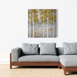 Canvas 36 x 36 - Birch forest