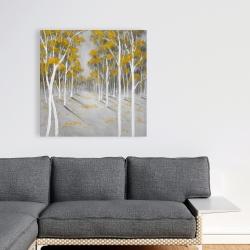 Toile 36 x 36 - Forêt de bouleaux jaunes