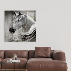 Canvas 36 x 36 - Rustic horse