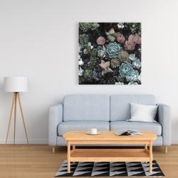 Canvas 36 x 36 - Succulent set