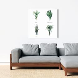 Canvas 36 x 36 - Fines herbes