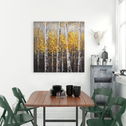 Canvas 36 x 36 - Sunny birch trees