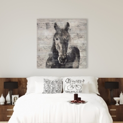 Canvas 36 x 36 - Abstract horse with typography